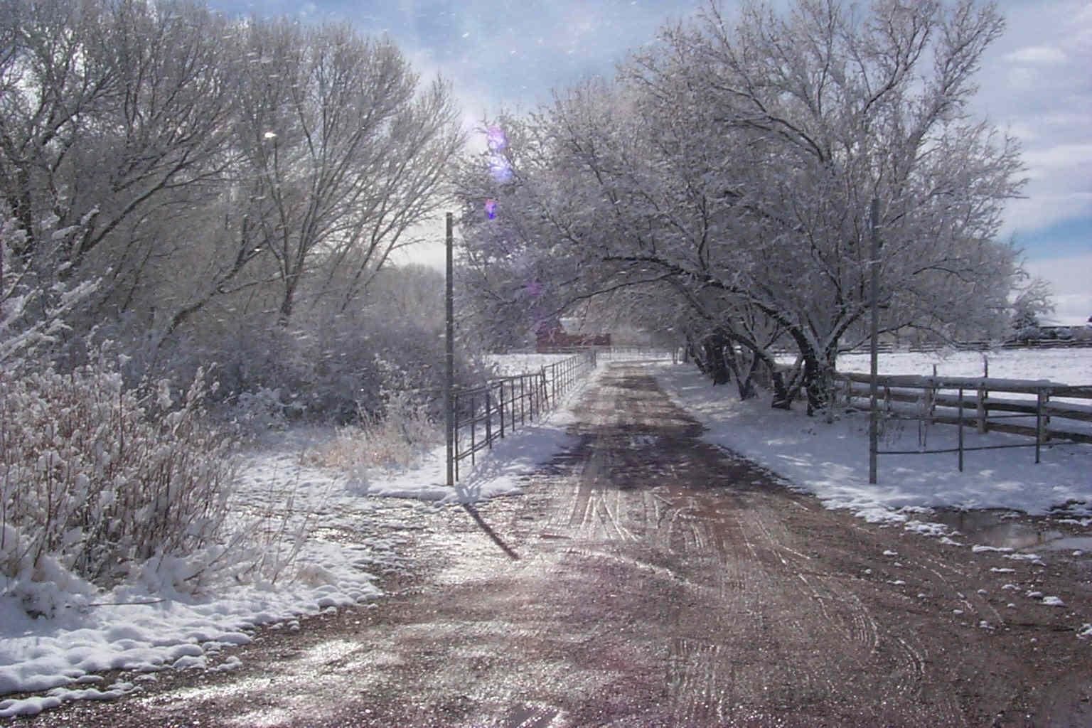 winter city lane with - photo #1