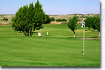 golf-greens1